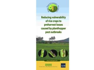 Rice planthopper project brochure