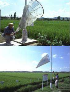 Aerial net traps used in Korea's pest surveillance stations to trap migrating insects. Photo credit: Y.H. Song