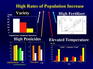Factors causing high reproduction rate